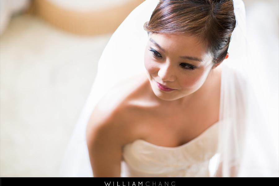 Celebrate at Snug Harbor Wedding Photos | Danielle + Adam
