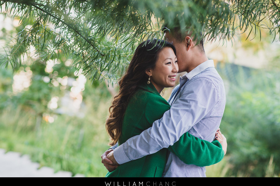 SeaGlass Carousel in Battery Park engagement photos | Aileen + Eddie